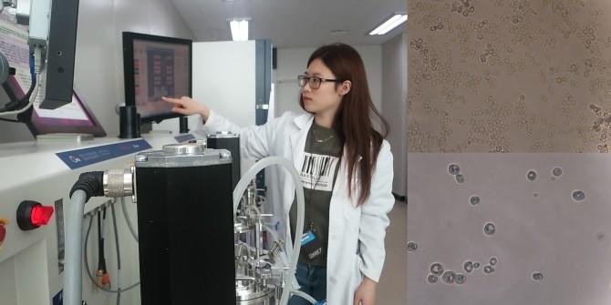 류명선 발효미생물산업진흥원 연구원이 미생물을 발효시키는 실험도구(발효조)를 확인하고 있다.(왼쪽) 우리나라 토착 유산균(오른쪽-위)과 토착 효모(오른쪽-아래) - 발효미생물산업진흥원 제공